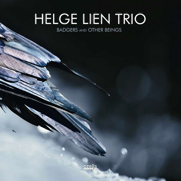 Helge Lien Trio – Badgers And Other Beings