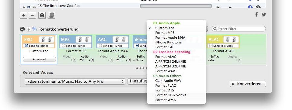 Mit einem Infofenster zeigt  Flac To Any Pro die verfügbare Dateiformate an - in etwas eigener Sortierung