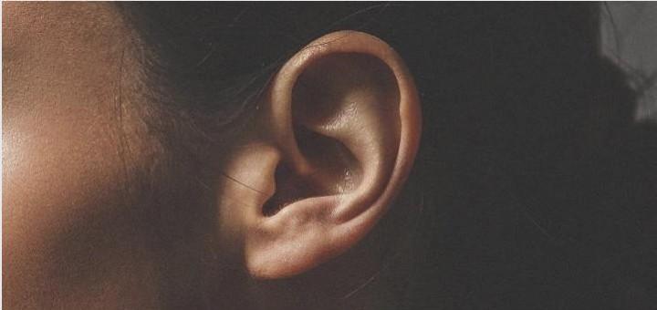 Ohren sind oft hübsch anzuschauen, aber leider zum Hören völlig untauglich