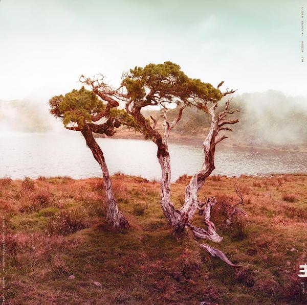 Ohne Gesang ebenfalls spannend: Juniper, das neue Album von Slowly Rolling Camera