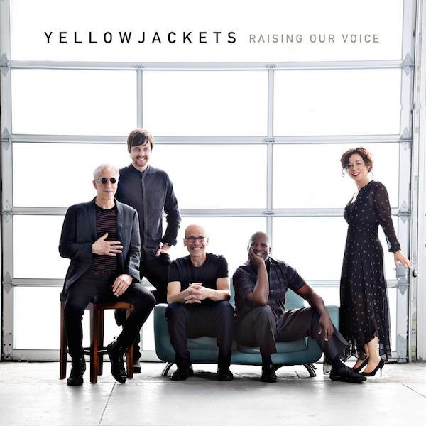 Immer ein Hörtipp: Die Yellowjackets, dieses Mal mit Raising Our Voice