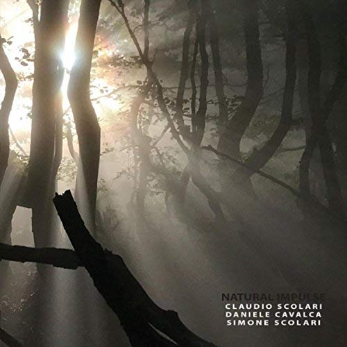 Intensives Klangerlebnis: Scolari/Cavalcas neues Album Natural Impulse ist ein Versuchslabor für Jazz-Erfrischung